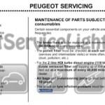 Reset service light indicator Peugeot 3AC 307 manual