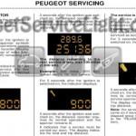 Reset wrench service light indicator Peugeot 307 CC manual